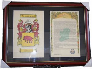 Double 17 x 11 framed Coat of Arms & Surname History