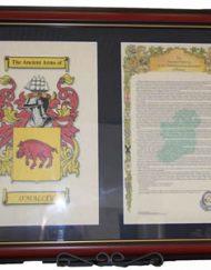 Double A4 COA & History framed