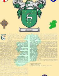 Irish Separatist Badge & Suname History