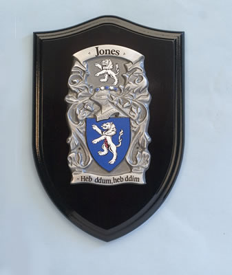 Medium Pewter Shield